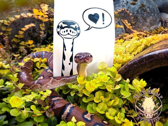 SNAKE w// Personalized Name Vinyl Decal Sticker Boa Ball Python Reptile Garter