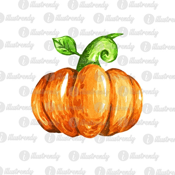 Painted pumpkin PNG for sublimation DOWNLOAD ONLY watercolor hand drawn