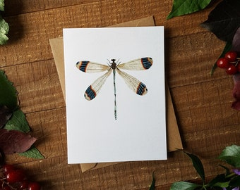Dragonfly Card, Watercolour Dragonfly, Watercolour Cards, Blank Cards, Note Cards