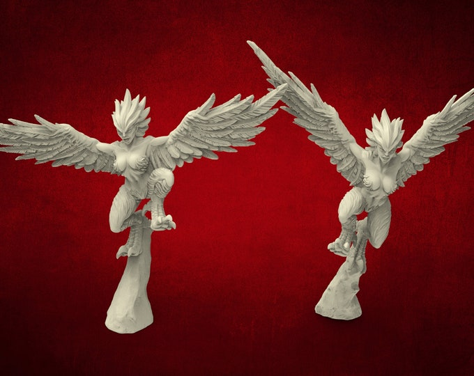 AMAZONS! Harpy / Harpies - 3D Printed Resin Miniature for Dungeons and Dragons Pathfinder and other Tabletop RPG