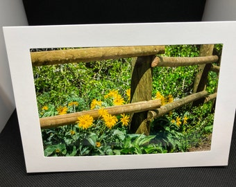 Matted photo greeting card with flowers