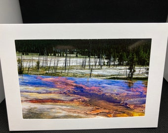 Matted photo greeting card Thermal feature with trees