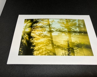Matted photo of a sunrise at Yellowstone National Park