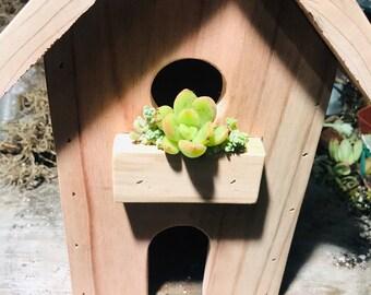Succulent planter Birdhouse|succulents|succulent arrangement |succulent centerpieces |succulent gifts