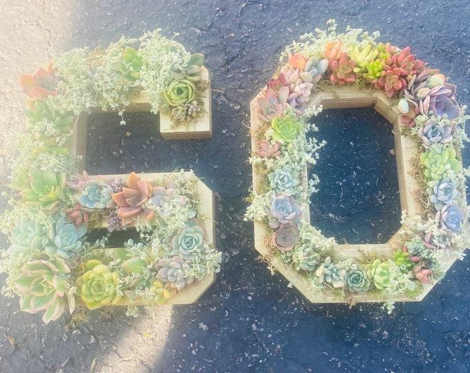 Succulent Number Planter , Succulent Arrangement , Number Planters