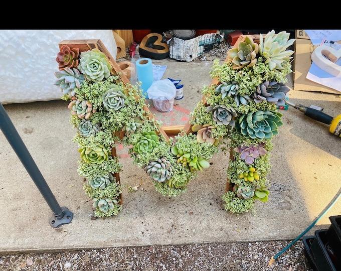 Large Succulent Planter , Mongram Succulent Letters , Succulent Arrangements