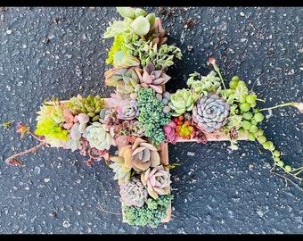 A Succulent cross planter, succulent arrangement , succulent gifts , sympathy gifts , easter decor ,