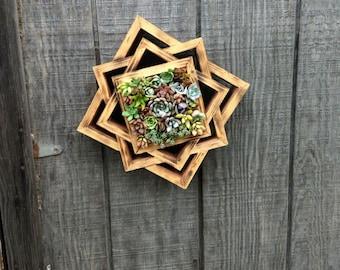 succulent arrangement |succulent planter|centerpieces |birthday gift |bridal gifts | teacher appreciation,