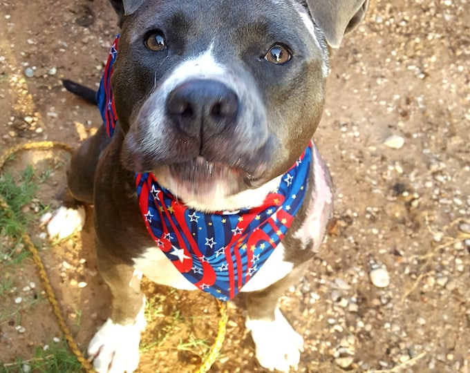 Dog Bandana, Tie on, Reversible, Patriotic Print