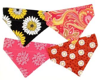 Cat Bandana Over the Collar Bundle, Floral Print Pet Bandana, Tea Cup Dog Bandana