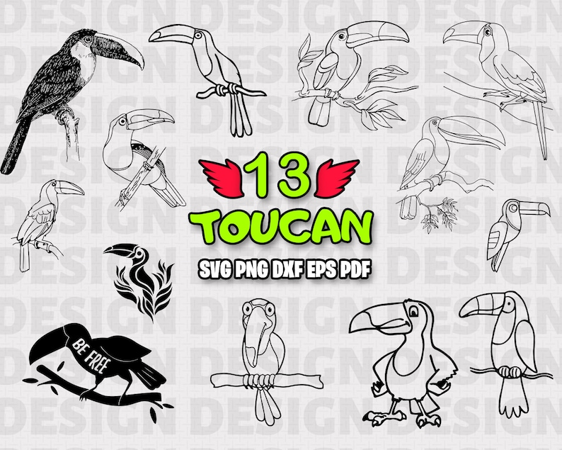 Toucan Svg Toucan Toucan Clipart Tropical Svg Svg Files Etsy