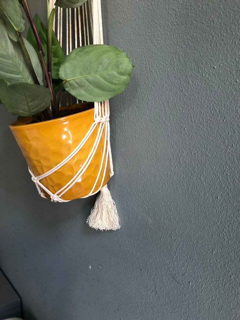 wall hanging planter Macrame plant hanger ring minimal design modern macrame