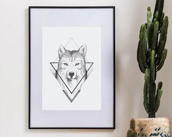 Wolf Illustration - Original framed work