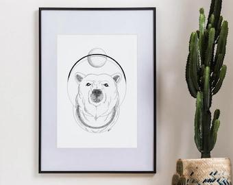 Illustration Polar Bear - Original framed work