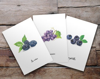 Lot of 3 illustrated postcards - Fruits and vegetables in watercolor - Blackberry, grape and blueberry