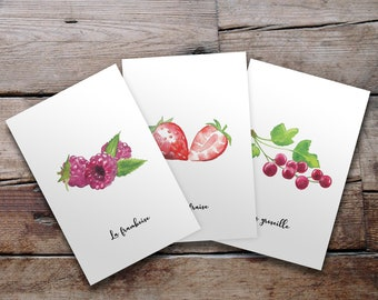 Lot of 3 illustrated postcards - Fruits and watercolour vegetables - Strawberry, raspberry and redcover