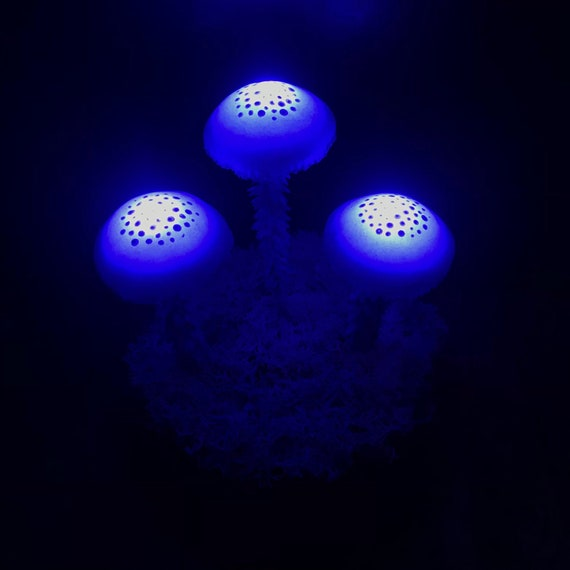 Mushroom Led Lamp 058   Etsy