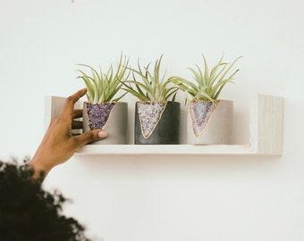 Succulent Planter | House Plant Planter | Air Plant Holder
