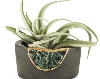 Geode Planter | Small Succulent Planter | Mini Air Plant Holder | Succulent Pot