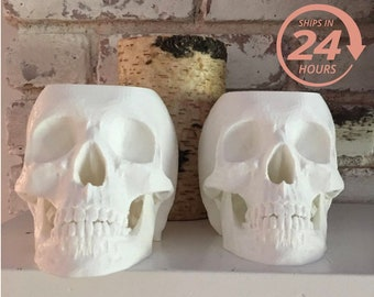 Large Halloween Planter, Gothic Home, Realistic Skull Planter, Skull, Unique Home Decor, Gothic Home Decor, Men's Gift, Halloween Decor