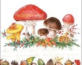 Mushrooms Paper Napkin Serviette For Decoupage Scrapbooking Paper Crafts 530