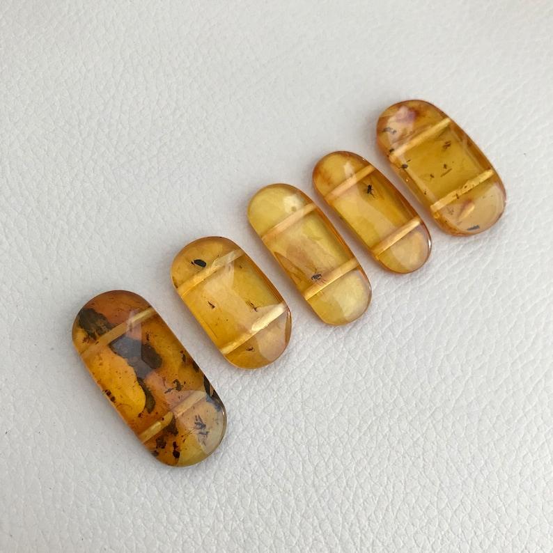 Genuine Baltic honey amber succinite set of five large flat Unique insects each bead transparent beads with includes  \u771f\u6b63\u7684\u6ce2\u7f57\u7684\u6d77\u7425\u73c0\u4e0e\u6606\u866b