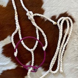 Black Muletape Halter w Red Rope Noseband w Leather Switch
