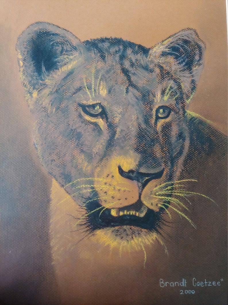Brandt Coetzee Pastel Painting Original Art Lion Painting Wildlife Art African Art South African Art Brandt Coetzee Artist