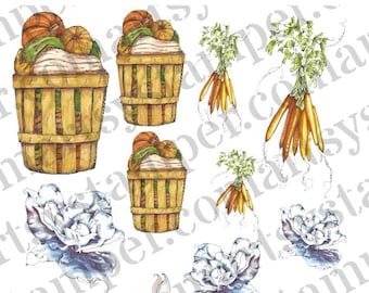A Bunny's Harvest Stamp Set for Papercrafting, Card Making, Party Decor and More. Print and Go Sheets Included for Quick and Easy Projects