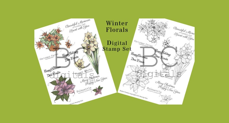 Winter Florals Stamp Set jpg png and print and go sheets image 0