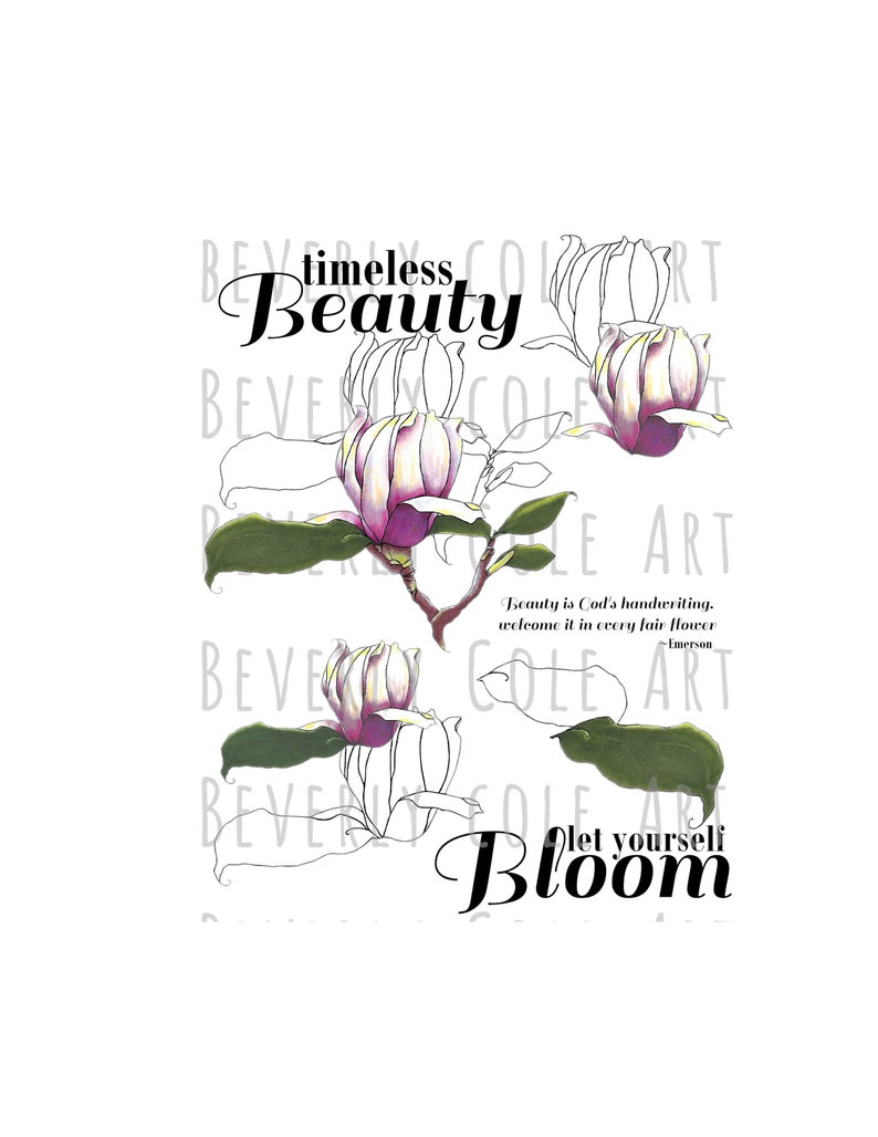 My Magnolia Stamp Set PNG's JPG's for Crafting image 0