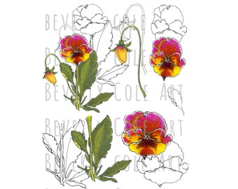 Perfect Pansy Stamp Set PNG's JPG's for Crafting, Scrapbooking, Cardmaking. Clip Art, Coloring pages, Hand drawn Floral&Garden Spring Nature