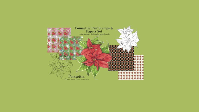 Poinsettia Pair Digital Stamp and Paper Set for Christmas image 0
