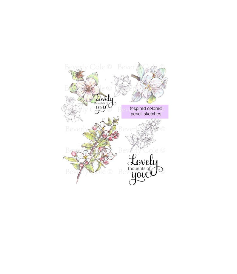 Sketched Spring Blossoms digital stamp set for cards image 0