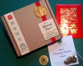 Grow a Money Plant - Celebrate the Chinese New Year 2021 - Wishing Prosperity, Luck, Good Health