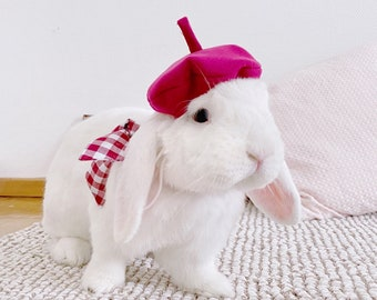 Raspberry Pet French Beret, Beret Hat for Bunny Rabbit, Dog and Cat, Bunny Hat, Cat Beret Hat, Dog Beret Hat, Puppy Hats, Small Pet Hat