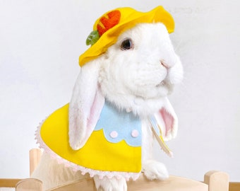 Easter Cape&Hat Costume for Pet Rabbit, Small Dog and Cat, Pet Easter Egg Cape and Carrot Hat Set, Easter Bunny Dog Costume, Cat Clothes