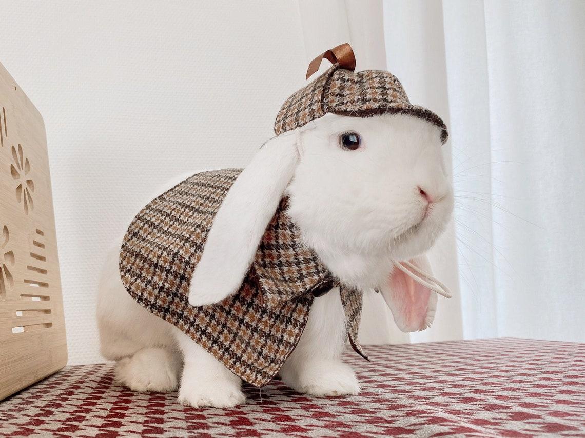 Sherlock Holmes Rabbit Halloween Costume