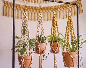 DAISY CHAIN Macrame Plant Hanger in Mustard & White - Boho Decor