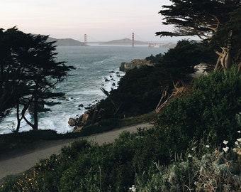 Land's End - San Francisco - Digital Image