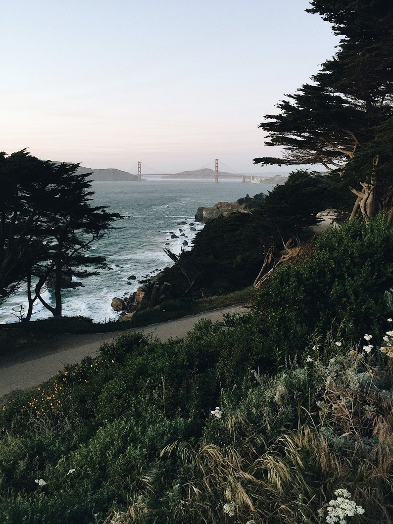 Land's End  San Francisco image 0