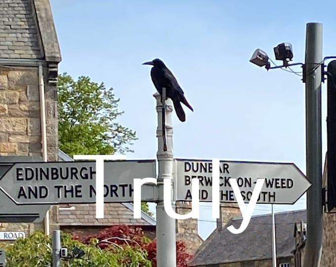 As the crow flies - Haddington