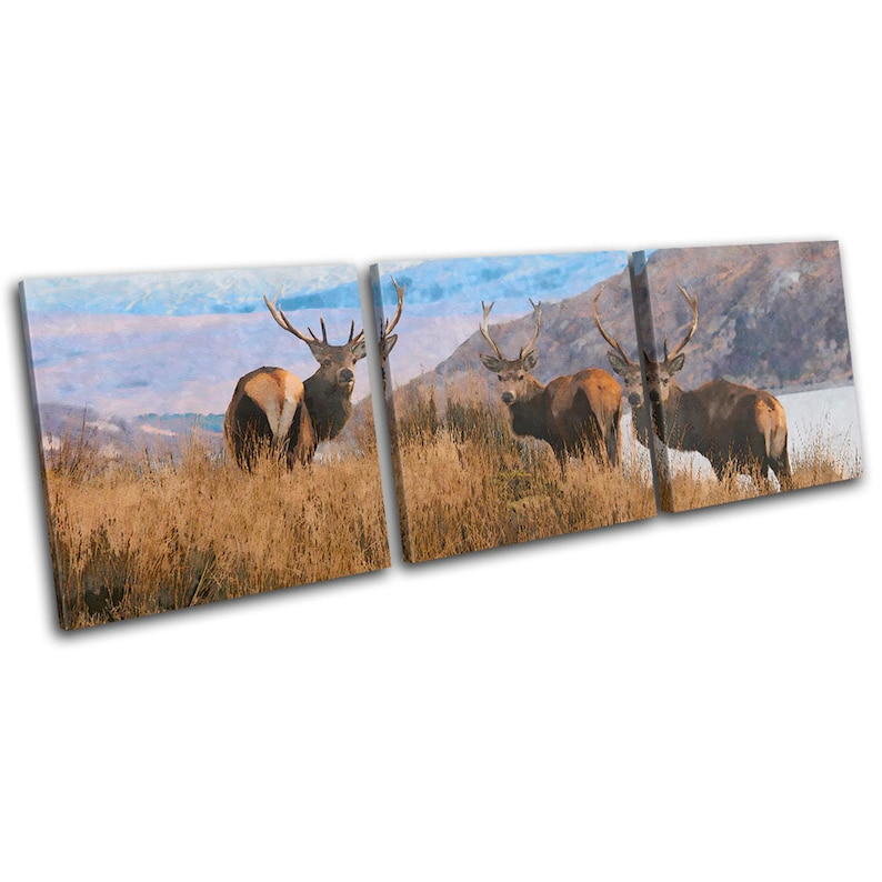 Stag Deer Abstract Highland Landscapes TREBLE  Canvas Art Print Box Framed Picture Wall Hanging