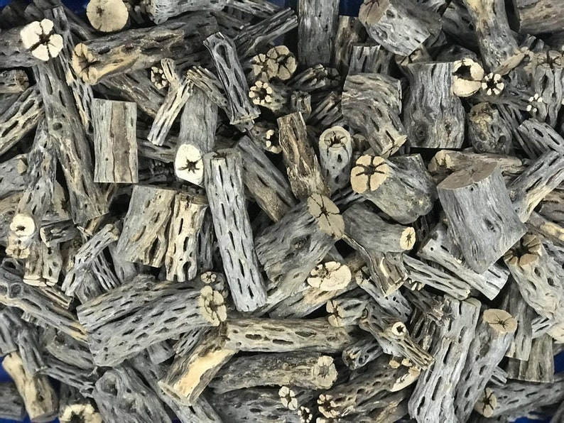 Cholla Wood Working Air Plant Stand Crab Pleco Shrimp Small Pet Chew 3 Craft 2.5 lbs. 100 Pc