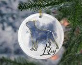 Custom Boston Terrier Porcelain Ornaments, Canis Major Constellation, Memorial Gift, Dog Lover Mom. Personalization Gift