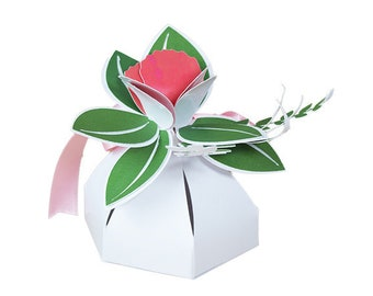 744e3c553a98 Coral Flower Favor Box (pk of 6) Free shipping