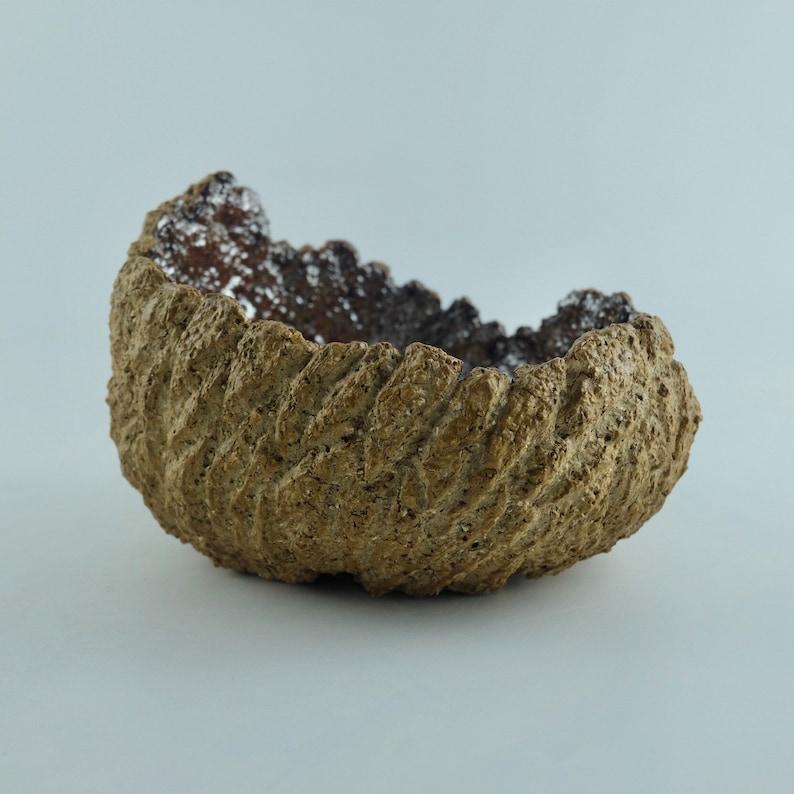 The Desert Dragon Fossil Egg Exclusive Pot Perfect for plants and bonsai Shiny Metallic glaze interior