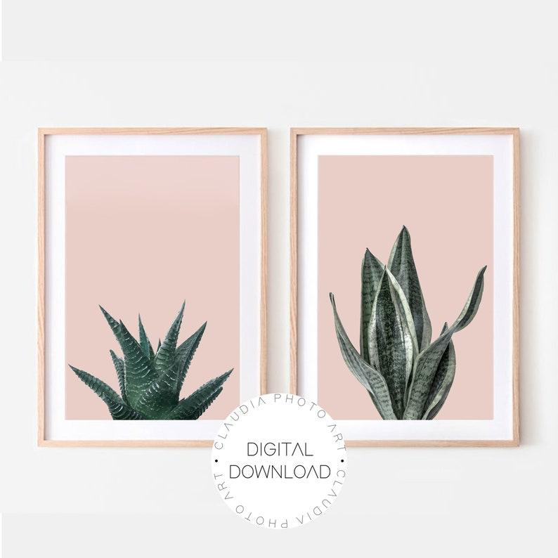 set of  2 wall art.Plant decor Botanical Art Succulent Home Decor,Set of 2 prints,Sansevieria  Aloe Aristata Digital Download Art Print