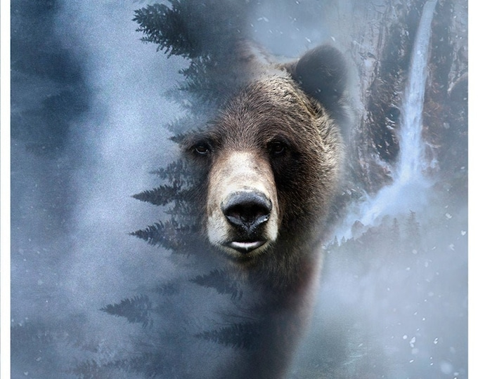 Storm Bear Digital Panel, Call of the Wild 28.75in x 43in