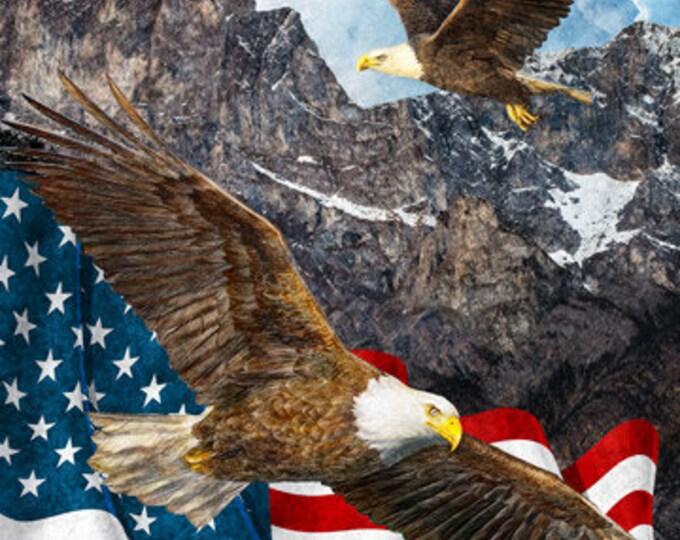 NORTHCOTT, DIGITAL Eagle and Flag Panel
